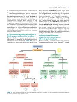 DE PRINCIPIOS O LEHNINGER LIVRO BAIXAR BIOQUIMICA