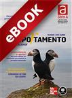 Comportamento Organizacional - eBook