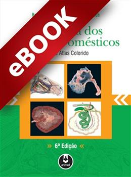 Anatomia dos Animais Domésticos - eBook