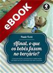 Afinal, o que os bebês fazem no berçário? - eBook